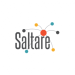 Saltare partner. Saltare start with business goals and align people, processes and technology to achieve genuine BI value using the 4dBI methodology.