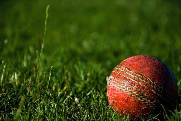 photo of cricket ball